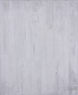 <p>Untitled (Monochrom weiss)<br /><br />2008<br />Oil on canvas<br />110 x 90 x 2 cm</p>